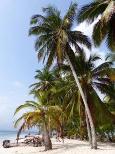 San Blas Inseln in der Karibik vor Panama : Abenteuerliche Anreise aber mit Kindern ideal