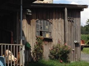 Bauernhofidylle beim Familienurlaub im Fichtelgebirge