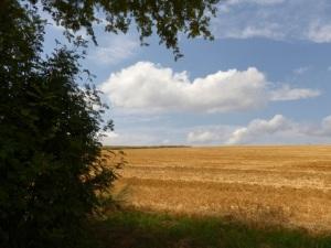 Familienurlaub im Fichtelgebirge - Feldwirtschaft