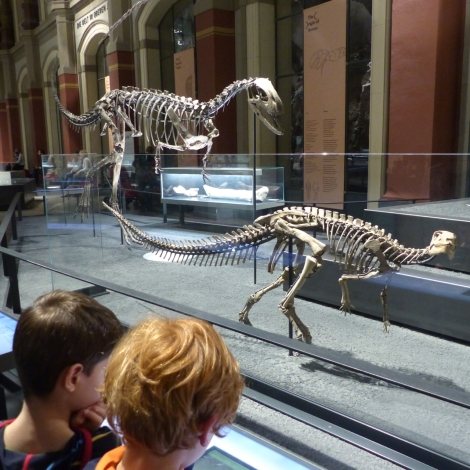 NaturkundemuseumBerlinKindervorRaubsauriern